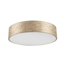 Palnas 61003955 RENY LED Stropné svietidlo